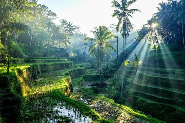 6 điểm du lịch đáng đồng tiền bát gạo nên đến vào 2019, một điểm ở ngay Đông Nam Á - Ảnh 6.