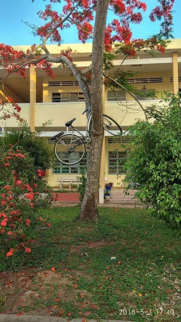 Trò đùa mới của học sinh bị lên án dữ dội: Giấu xe đạp của bạn học ở những nơi tìm cả ngày cũng không ra - Ảnh 7.