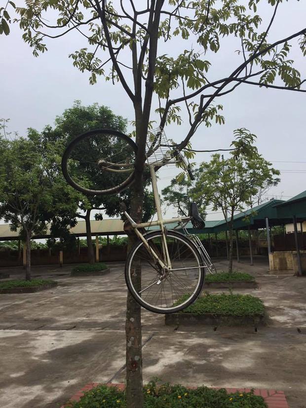 Trò đùa mới của học sinh bị lên án dữ dội: Giấu xe đạp của bạn học ở những nơi tìm cả ngày cũng không ra - Ảnh 4.