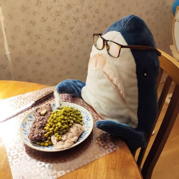 Gặp gỡ Blaha - Chú cá mập nhồi bông đến từ IKEA đang làm náo loạn mạng xã hội thế giới - Ảnh 4.