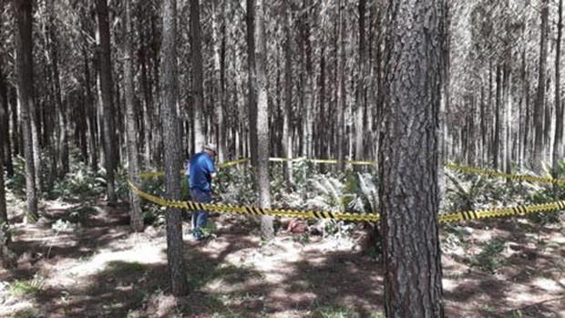 Cầu thủ bóng đá bị sát hại dã man và ném xác trong rừng - Ảnh 2.