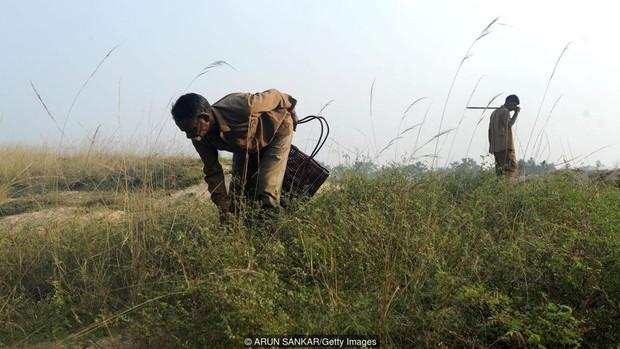 Tộc người rắn kỳ lạ tại Ấn Độ: ngành nghề độc đáo nhưng bị kỳ thị tại chính quê hương của mình - Ảnh 4.