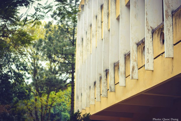 Đây là Đại học duy nhất ở Việt Nam có 1 khu rừng tuyệt đẹp ngay trong khuôn viên trường, tha hồ sống ảo - Ảnh 15.