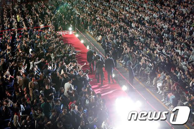 Thảm đỏ LHP quốc tế Busan hội tụ gần 30 siêu sao: Jang Dong Gun - Hyun Bin như ông hoàng, dàn mỹ nhân quá lộng lẫy - Ảnh 1.