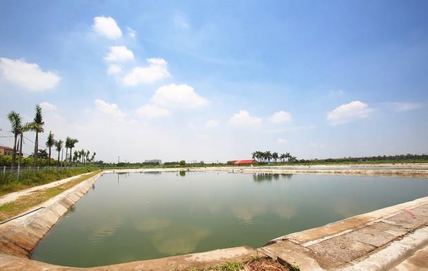 Ngay tại Hà Nội có một ngôi trường rộng gần 200ha, cây cối, hóa trái phủ xanh khắp nơi như rừng nhiệt đới - Ảnh 13.