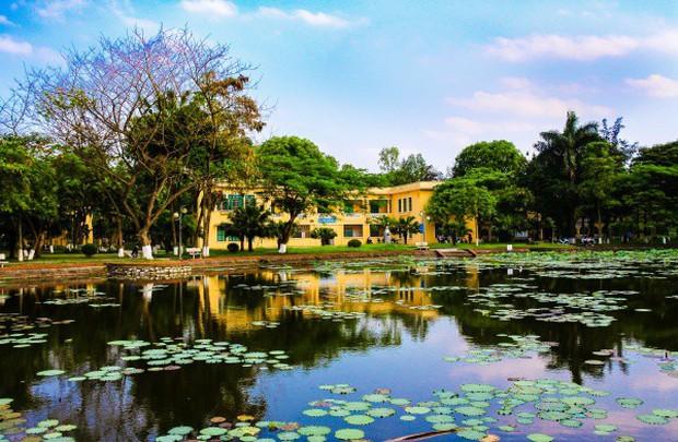 Ngay tại Hà Nội có một ngôi trường rộng gần 200ha, cây cối, hóa trái phủ xanh khắp nơi như rừng nhiệt đới - Ảnh 8.