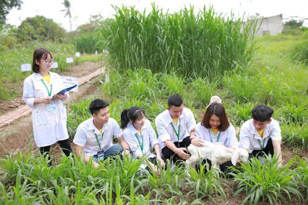 Ngay tại Hà Nội có một ngôi trường rộng gần 200ha, cây cối, hóa trái phủ xanh khắp nơi như rừng nhiệt đới - Ảnh 12.