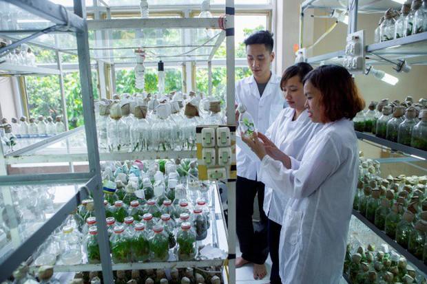 Ngay tại Hà Nội có một ngôi trường rộng gần 200ha, cây cối, hóa trái phủ xanh khắp nơi như rừng nhiệt đới - Ảnh 10.