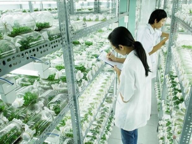 Ngay tại Hà Nội có một ngôi trường rộng gần 200ha, cây cối, hóa trái phủ xanh khắp nơi như rừng nhiệt đới - Ảnh 11.