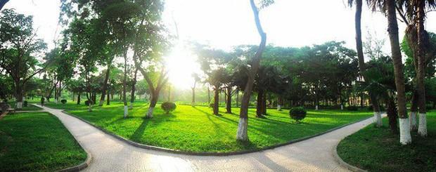 Ngay tại Hà Nội có một ngôi trường rộng gần 200ha, cây cối, hóa trái phủ xanh khắp nơi như rừng nhiệt đới - Ảnh 3.