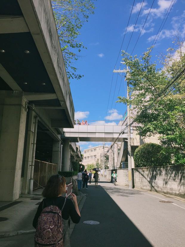 Chia sẻ của du học sinh Việt tại Nhật: Rau xanh là thứ đắt nhất và thứ gây nhớ nhung nhất là cơm nhà - Ảnh 11.