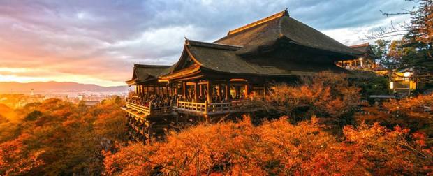 Chia sẻ của du học sinh Việt tại Nhật: Rau xanh là thứ đắt nhất và thứ gây nhớ nhung nhất là cơm nhà - Ảnh 5.