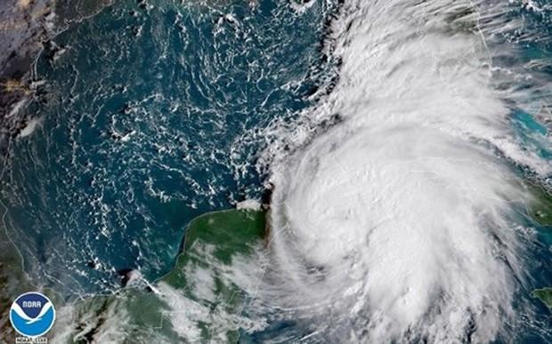 Florida, Mỹ công bố tình trạng khẩn cấp đối phó bão Michael - Ảnh 1.