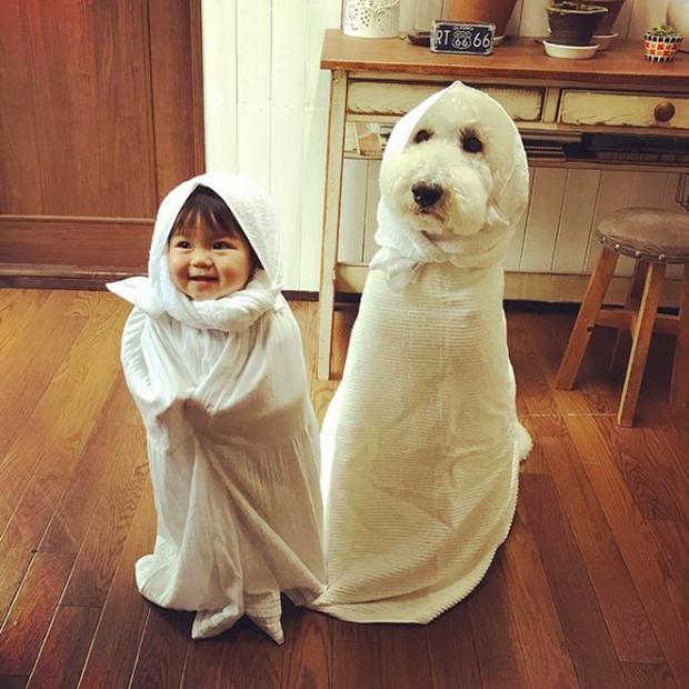 Em bé Nhật Bản nhỏ xíu bên chú Poodle to đùng là cặp đôi ngôi sao mới nổi trên Instagram - Ảnh 2.