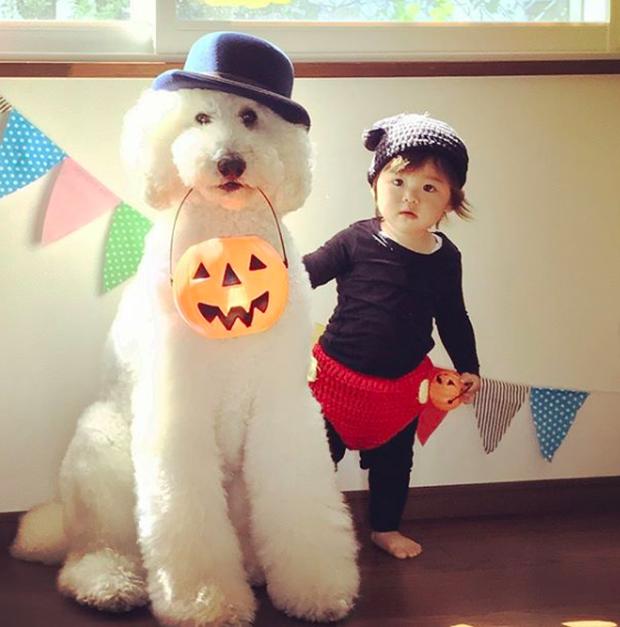 Em bé Nhật Bản nhỏ xíu bên chú Poodle to đùng là cặp đôi ngôi sao mới nổi trên Instagram - Ảnh 3.