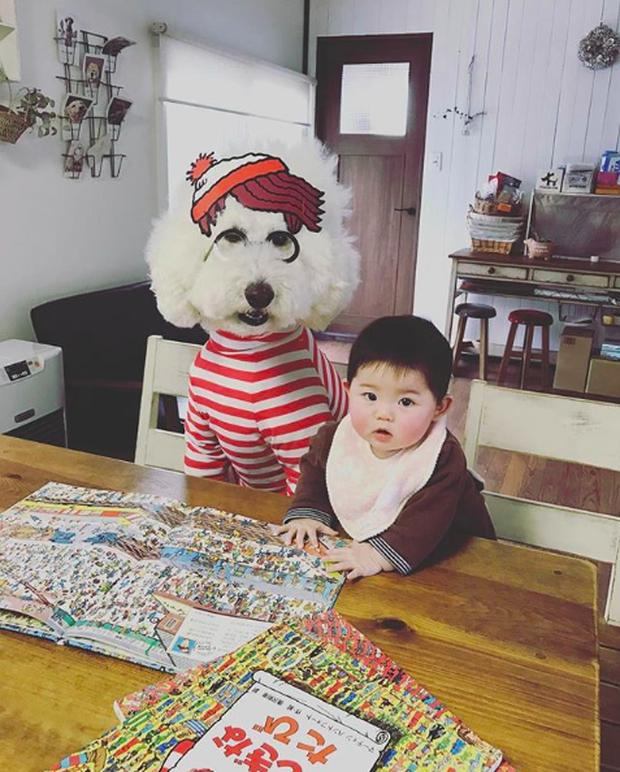 Em bé Nhật Bản nhỏ xíu bên chú Poodle to đùng là cặp đôi ngôi sao mới nổi trên Instagram - Ảnh 4.