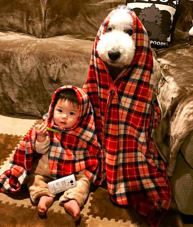 Em bé Nhật Bản nhỏ xíu bên chú Poodle to đùng là cặp đôi ngôi sao mới nổi trên Instagram - Ảnh 5.