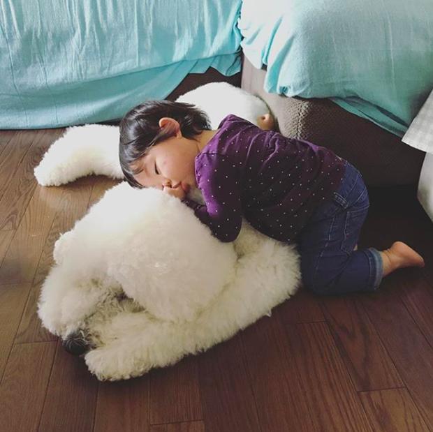 Em bé Nhật Bản nhỏ xíu bên chú Poodle to đùng là cặp đôi ngôi sao mới nổi trên Instagram - Ảnh 9.
