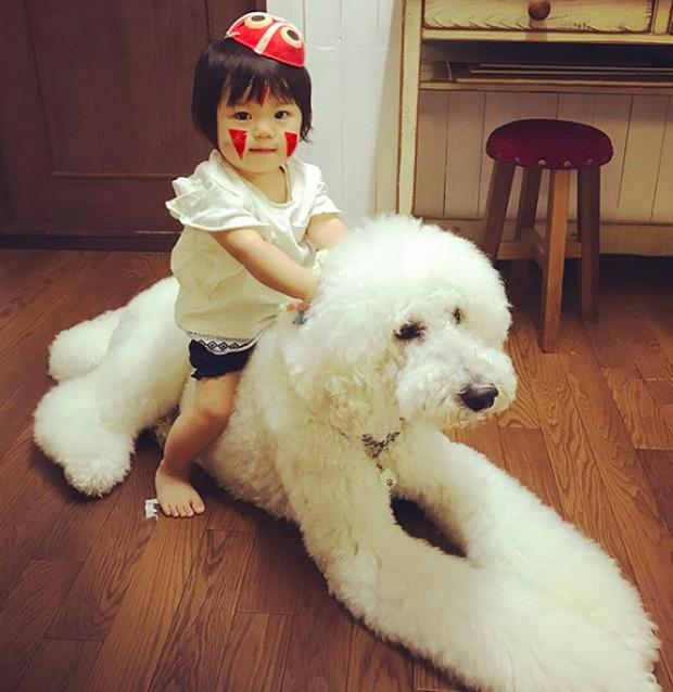 Em bé Nhật Bản nhỏ xíu bên chú Poodle to đùng là cặp đôi ngôi sao mới nổi trên Instagram - Ảnh 10.