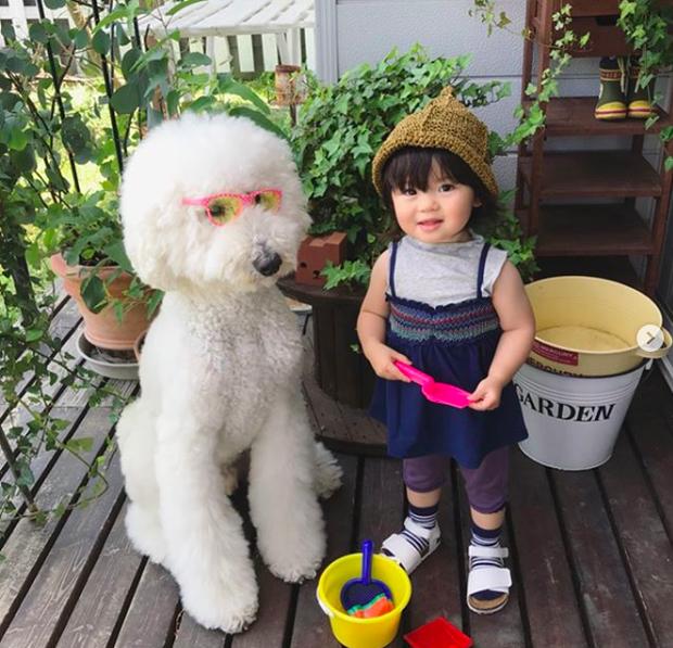 Em bé Nhật Bản nhỏ xíu bên chú Poodle to đùng là cặp đôi ngôi sao mới nổi trên Instagram - Ảnh 17.