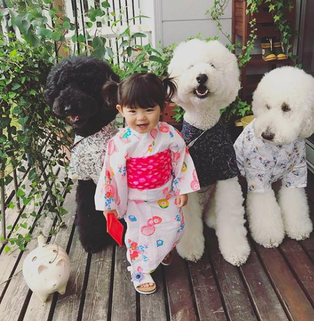 Em bé Nhật Bản nhỏ xíu bên chú Poodle to đùng là cặp đôi ngôi sao mới nổi trên Instagram - Ảnh 19.