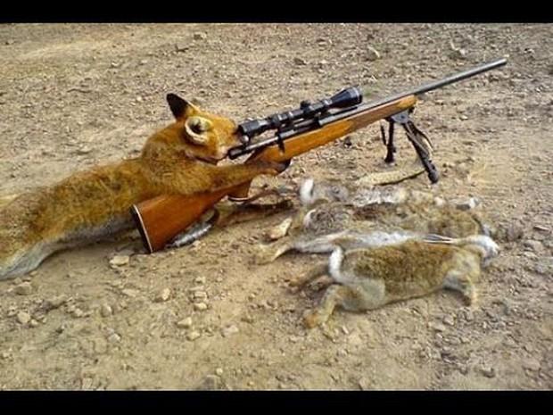 Mỹ: Chú thợ săn bị chó cưng bắn súng thủng lưng phải nhập viện - Ảnh 2.
