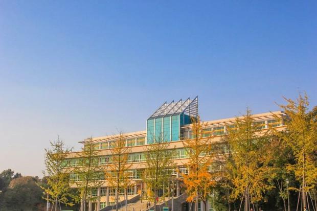 Ngất ngây ngắm trọn những trường Đại học có mùa thu đẹp nhất Trung Quốc - Ảnh 11.