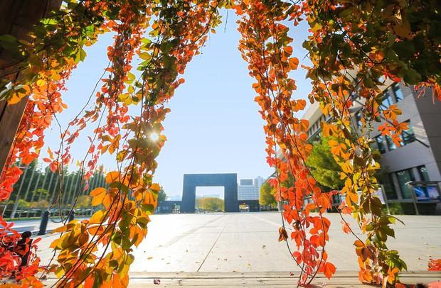 Ngất ngây ngắm trọn những trường Đại học có mùa thu đẹp nhất Trung Quốc - Ảnh 19.