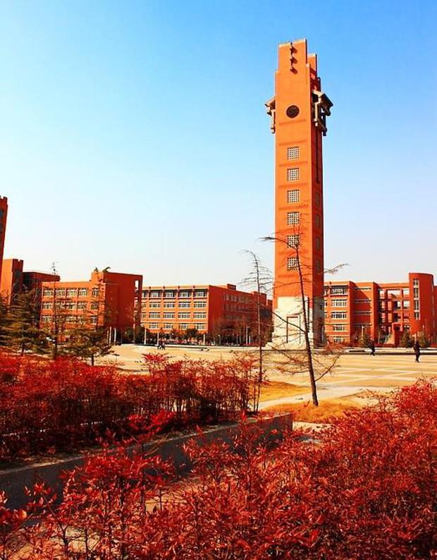 Ngất ngây ngắm trọn những trường Đại học có mùa thu đẹp nhất Trung Quốc - Ảnh 5.