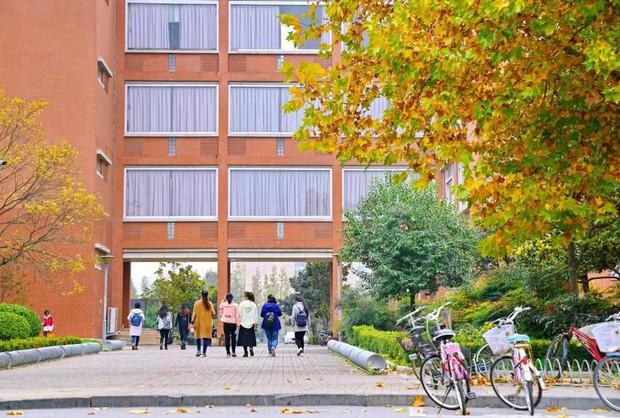 Ngất ngây ngắm trọn những trường Đại học có mùa thu đẹp nhất Trung Quốc - Ảnh 6.