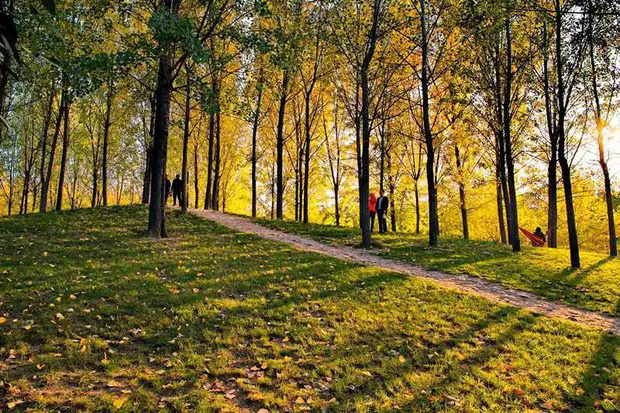 Ngất ngây ngắm trọn những trường Đại học có mùa thu đẹp nhất Trung Quốc - Ảnh 7.