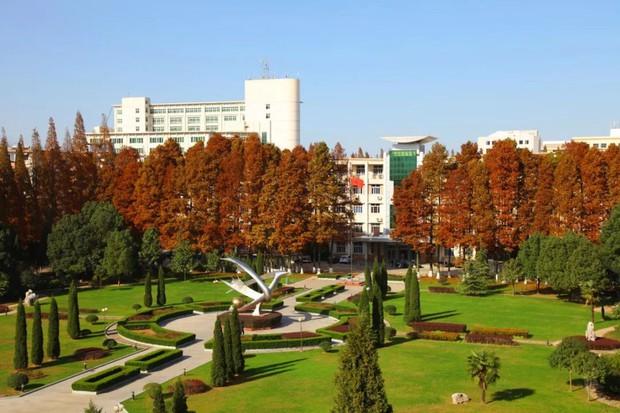Ngất ngây ngắm trọn những trường Đại học có mùa thu đẹp nhất Trung Quốc - Ảnh 9.