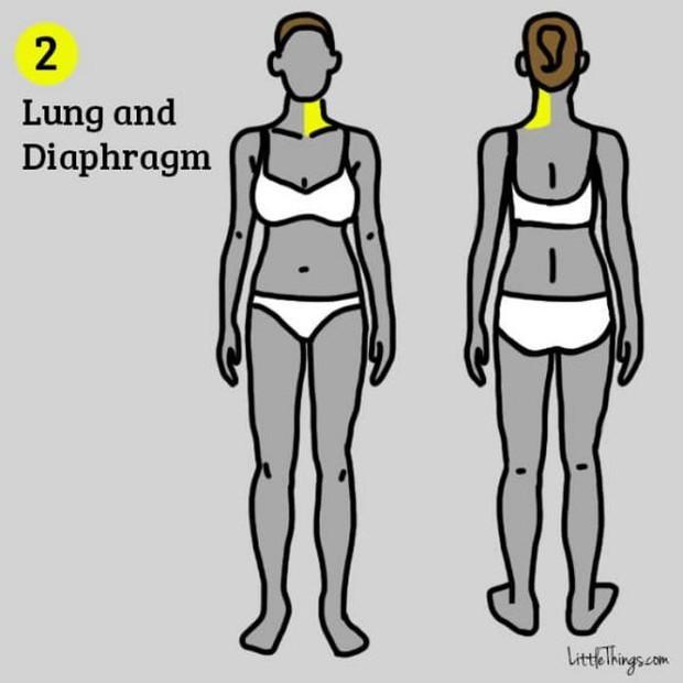 Những vị trí đau trên cơ thể cảnh báo nhiều bệnh nguy hiểm mà bạn không nên chủ quan xem thường - Ảnh 2.