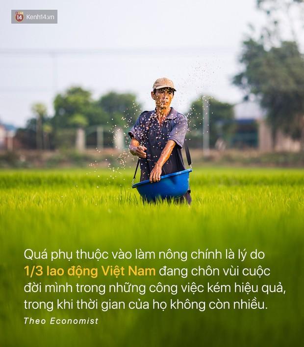 Báo quốc tế đưa tin: Người Việt Nam chưa kịp giàu đã già mất rồi - Ảnh 4.
