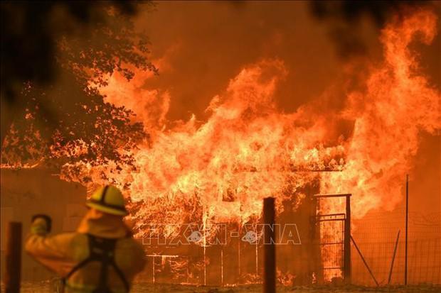 Số người thiệt mạng do cháy rừng tại California tăng lên mức kỷ lục - Ảnh 1.