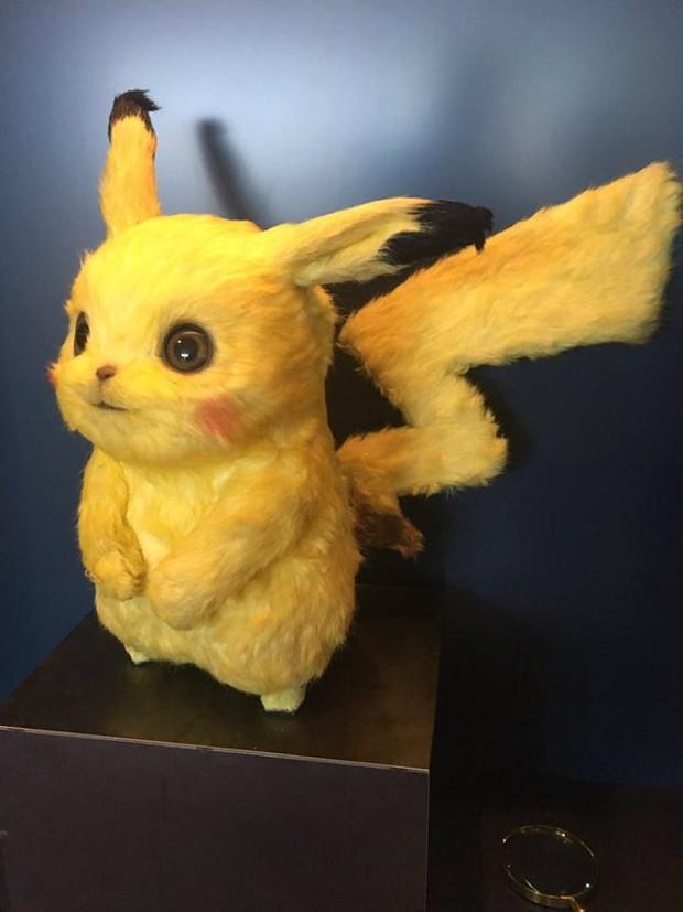 Lên phim mềm mượt đáng yêu là thế nhưng tượng mẫu của Pikachu ngoài đời gây hoảng hồn vì xơ xác như chuột đồng - Ảnh 2.