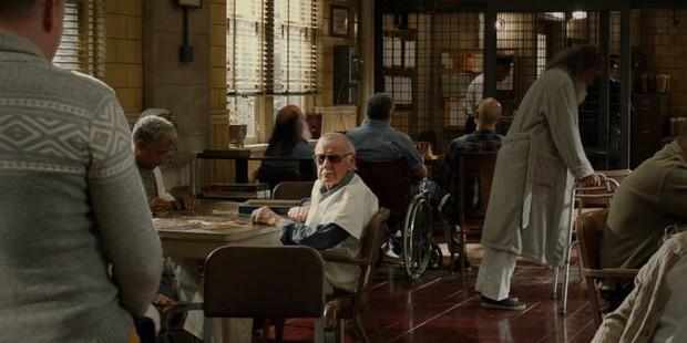 Nhìn lại gia tài vai diễn cameo trên màn ảnh rộng đầy thú vị của thiên tài Stan Lee - Ảnh 17.
