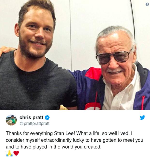 Dàn sao phim Marvel và nhiều nghệ sĩ khác cùng tưởng nhớ Stan Lee sau tin cha đẻ các siêu anh hùng qua đời - Ảnh 8.
