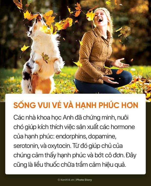 Nuôi cún cưng không chỉ giúp bạn vui vẻ mà còn chống lại rất nhiều bệnh tật - Ảnh 1.