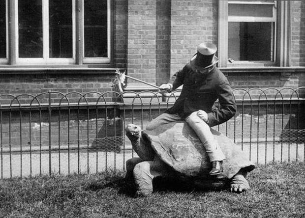 Chụp ảnh 100 năm trước: Nếu cho rằng người xưa chỉ biết ngồi thẳng lưng chụp ảnh thì hãy xem những dáng pose đỉnh cao này - Ảnh 17.