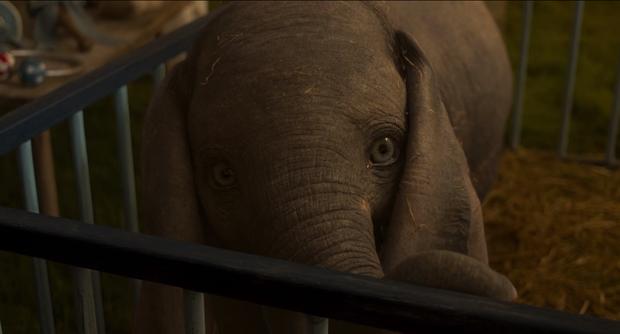 Chú voi biết bay Dumbo cute như một sinh vật huyền bí thuộc ở thế giới phép thuật trong trailer vừa tung - Ảnh 4.
