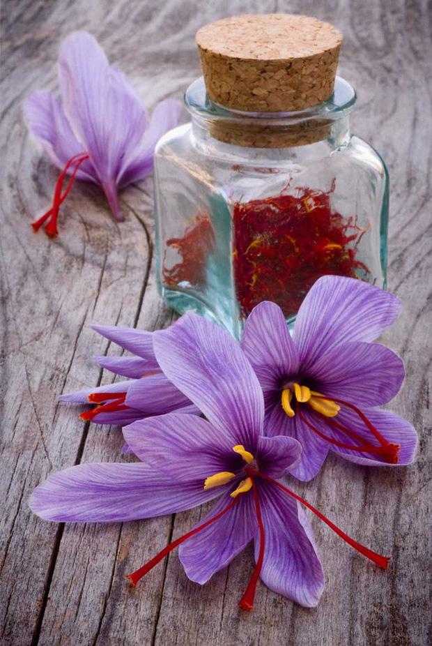 Bí mật thú vị của saffron - gia vị đắt nhất thế giới gần 1 tỷ/kg từng được Nữ hoàng Ai Cập dùng dưỡng nhan  - Ảnh 8.