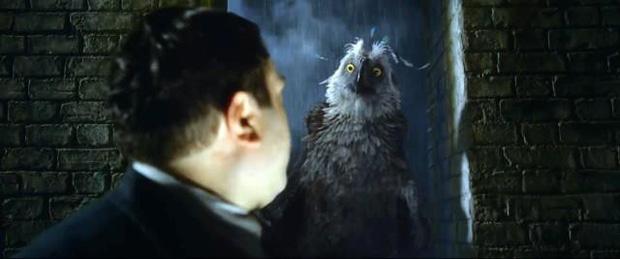 Điểm danh 12 con thú diệu kỳ xuất hiện trong Fantastic Beasts 2 - Ảnh 7.