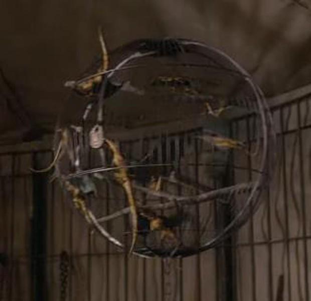 Điểm danh 12 con thú diệu kỳ xuất hiện trong Fantastic Beasts 2 - Ảnh 8.