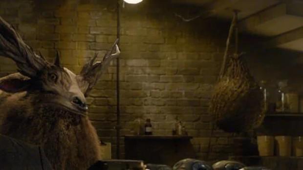 Điểm danh 12 con thú diệu kỳ xuất hiện trong Fantastic Beasts 2 - Ảnh 9.