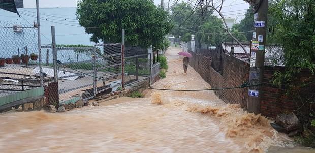 Chùm ảnh ngập lụt kinh hoàng qua Nha Trang, Khánh Hoà: Ô tô bơi như tàu ngầm, đồ vật trong nhà chìm trong biển nước - Ảnh 14.