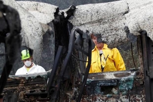 Ảnh: Chó nghiệp vụ Mỹ lùng sục tìm kiếm tử thi vụ cháy rừng California - Ảnh 13.