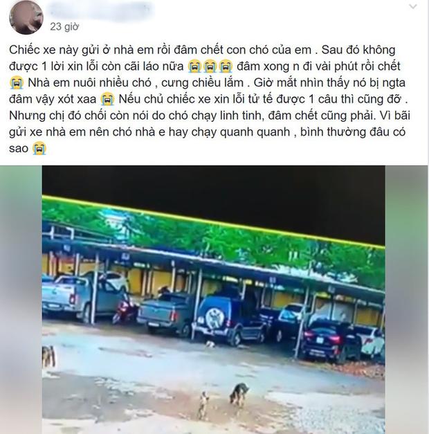 Chú chó bị cán chết ở bãi đỗ xe, chủ nhân đăng đàn tố cáo gây tranh cãi lớn trên MXH - Ảnh 2.