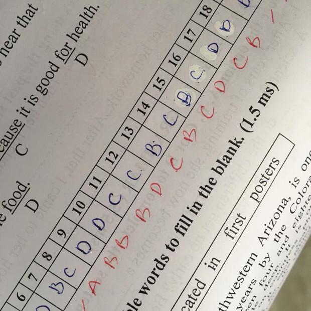 Nỗi đau lớn nhất khi đi học: Làm trắc nghiệm 10 câu thì sai đến 9 câu - Ảnh 7.