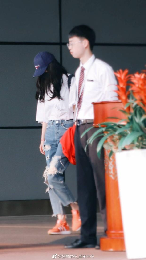 """Từng là """"nữ hoàng thời trang sân bay"""" nhưng nay Dương Mịch ngày càng kín đáo đơn giản là vì sao? - Ảnh 10."""